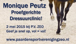 flyer dressuurclinic moniquepeutz-Large1-780x520 copy