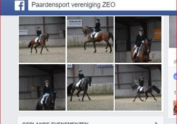 Uitslag & Foto's Dressuurwedstrijd paarden 5&6 maart!